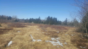 $ 39,5005.5 acres on West North River Rd Colchester
