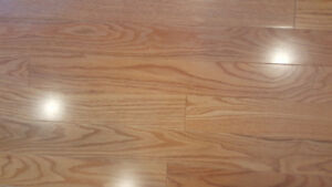 """206 Sq Ft of 3 1/4"""" Superior, Northern Red Oak"""