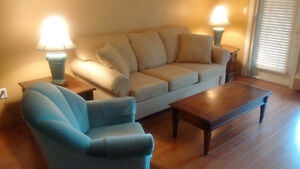A five-year-old sofa + two lamps + a swivel chair for sale