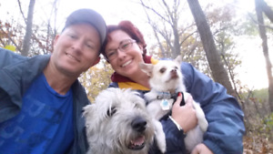 Lucky Dog - Walking, Daycare and More