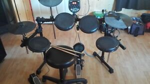 Alesis DM6  Drums Kingston Kingston Area image 1
