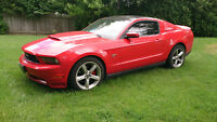 Reduced! 2010 Ford Mustang GT Coupe/Navigation/Glass Roof