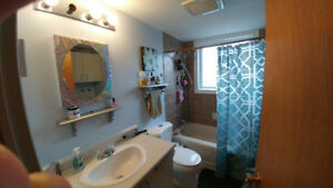 Chambly Appartement 4 1/2 a louer rapidement