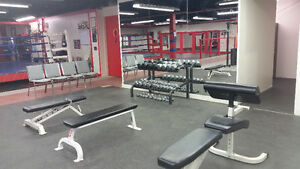New Year SPECIAL! 50% off your first month of training! Kitchener / Waterloo Kitchener Area image 4