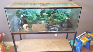 reptile tank with stand and accessories