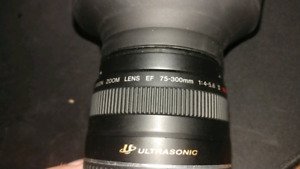 Canon 75-300mm F/4-5.6 III USM Lens