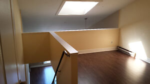MUST SEE! FULLY RENOVATED LOFT UNIT IN PRESTON