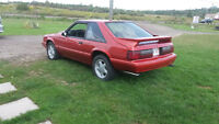 1988 mustang lx must see