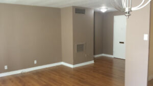 One Bedroom Condo in the Le Goyeau