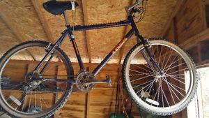 Limited Edition Jetta Trek Mountain Bike 1996