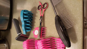 Cat/small dog grooming tools