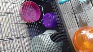 Rodent cage with toys Kitchener / Waterloo Kitchener Area image 4