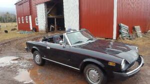 1978 Fiat convertible for sale