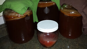 Kombucha - fizzy probiotic beverage you can make - Learn How!