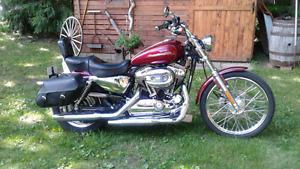 Harley sporster,   1200,2005 å carburateur, 34000kl