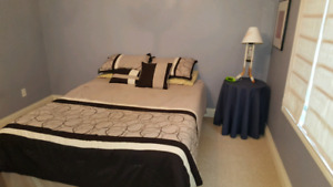 Rooms for rent - student or young professional