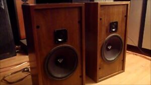 CERWIN-VEGA HED SPEAKERS