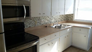 NEWLY RENOVATED 3 BED APARTMENT Kingston Kingston Area image 6