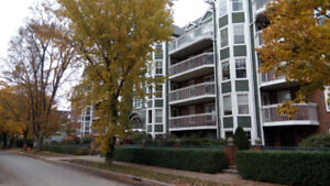Large 2 Bedroom + Den Condo - Well Appointed South End Bldg