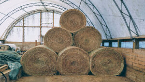 Horse Hay 4x5 Stored Inside