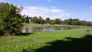 Two lots on Grand River. Stone House Kitchener / Waterloo Kitchener Area image 4