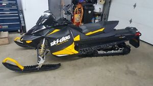 MUST SELL WIFES SLED