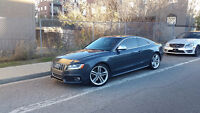 2008 Audi S5 Coupe (6 speed) Mint Condition  31k OBO