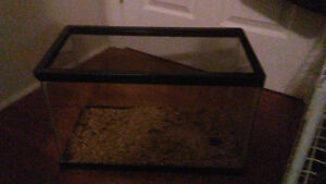 10 gallon tank with mesh lid