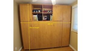Convertible Bed, Bookcase, Wardobe, and Desk System