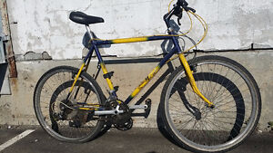 Norco performance bike :