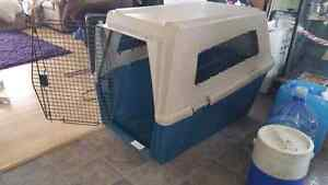 Large plastic dog kennel