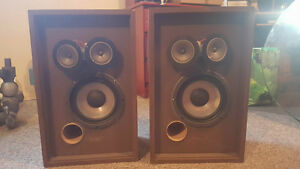Bose Interaudio Speakers