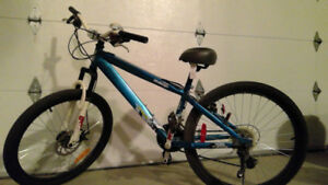 Youth Bike Great Condition New Seat and Bell