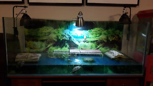 Extra large fish /turtle tank