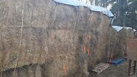 Timothy, Brome alfalafa Horse hay for sale or trade