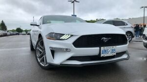 2019 Ford Mustang *demo* Coupe Premium 2.3l I4 Eco 200a