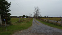Nice Cozy Private Country House for Rent in Tweed for $1300.00