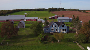 Dairy Farm for Sale
