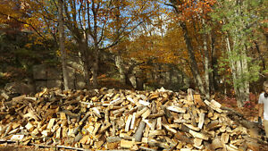 Firewood!! Dry or Green! We have Blocks or Split!! Delivery!
