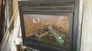 Two gas fireplace inserts