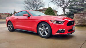 2016 Ford Mustang Coupe (2 door)