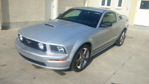 2008 Ford Mustang GT Coupe - Leather - Clean CarFax