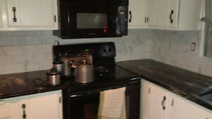 Quality Home Renovations and Handyman Services Cambridge Kitchener Area image 9