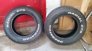 2 pneus Predator Radial GTS P215/60R14