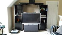 "51"" Panasonic HD TV and Entertainment Unit"