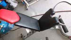 Bowflex, Bench and Dumbbells, 552, Select tech combo