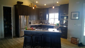 Sell your Home for Max. $$$ - Renovate your Kitchen Kitchener / Waterloo Kitchener Area image 5