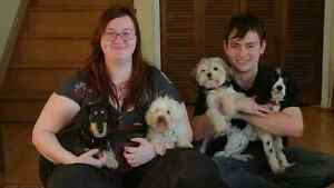 Cuddle Pet Care- Professional Pet Sitting and Care Business