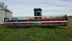 1996 MF 220 SP SWATHER