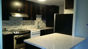 3 Bedroom Beautifully Renovated Townhome - Taunton/Simcoe